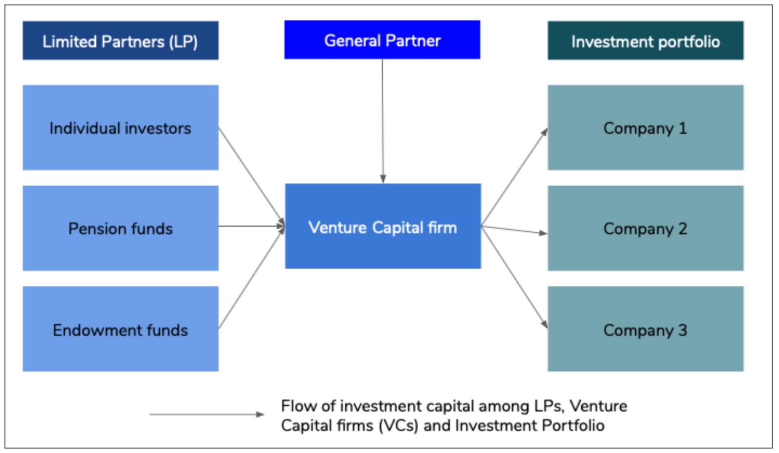 Venture Capital stakeholder